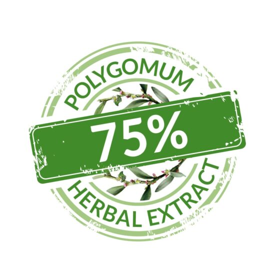 Polygonum Herbal Extract 75